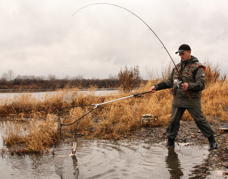 бийск отчеты о рыбалке 2017