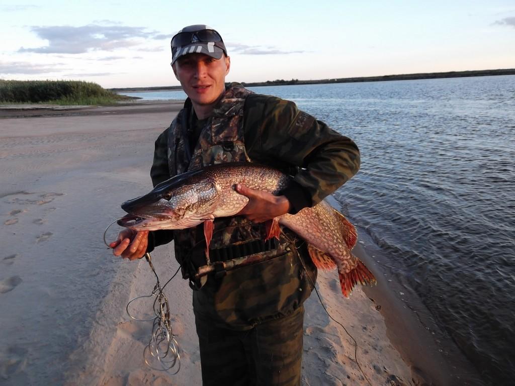 Сон поймал рыбу своими руками 674